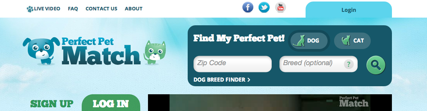 Perfect Pet Match'